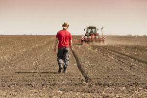 Agriculture moderne et magnésium